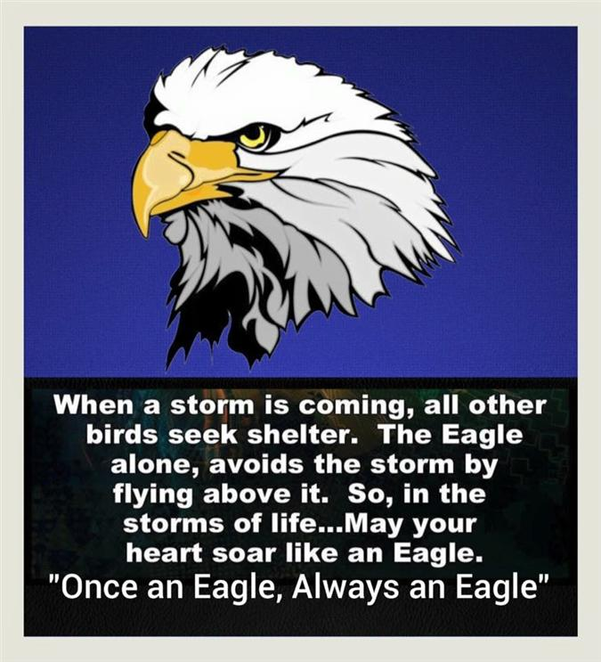 Once an Eagle...