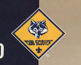 Thinking of joining Cub Scouts?