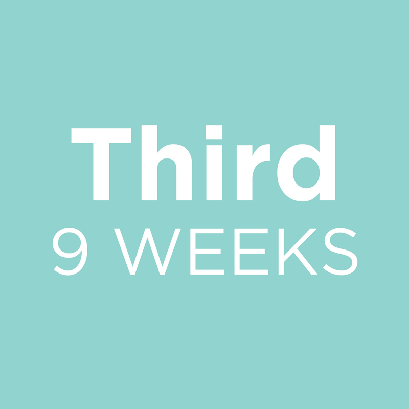 Third 9 Weeks
