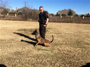 Lewisville PD Police Dogs Visit CCE