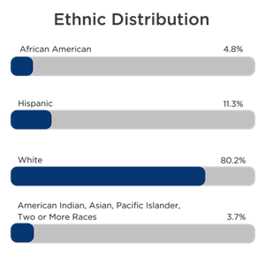 Ethnic Distribution