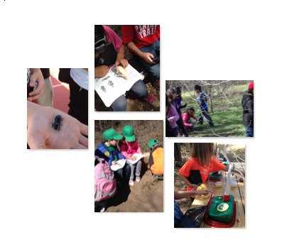 learning activities outdoors